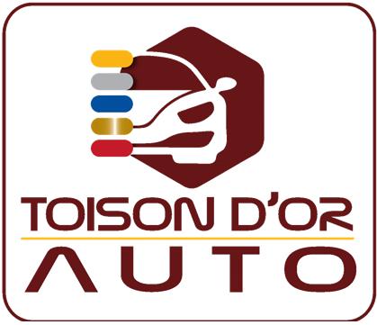 logo de Renault toison d